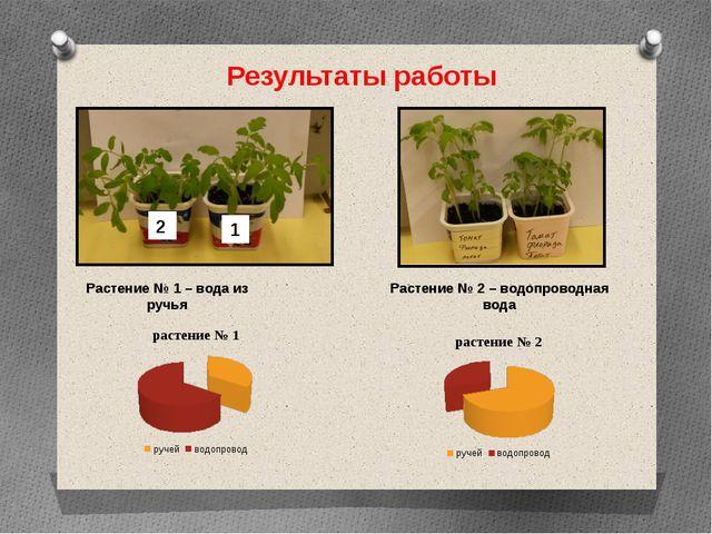 Результаты работы Растение № 1 – вода из ручья Растение № 2 – водопроводная в...