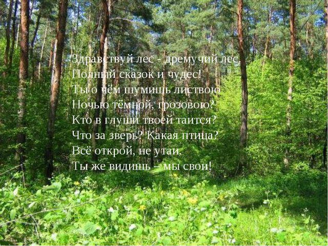 Здравствуй лес - дремучий лес. Полный сказок и чудес! Ты о чём шумишь листвою...