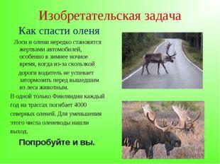 Изобретательская задача Как спасти оленя Лоси и олени нередко становятся жерт