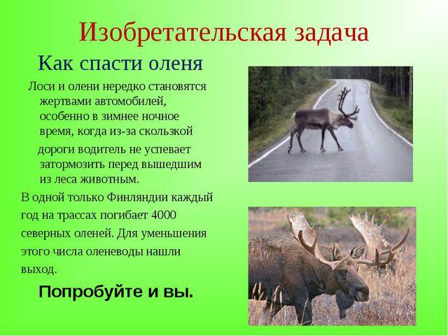 Изобретательская задача Как спасти оленя Лоси и олени нередко становятся жерт...