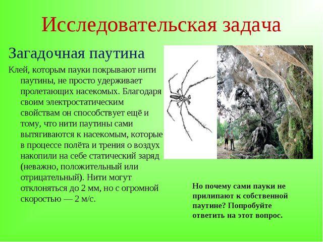 Исследовательская задача Загадочная паутина Клей, которым пауки покрывают нит...