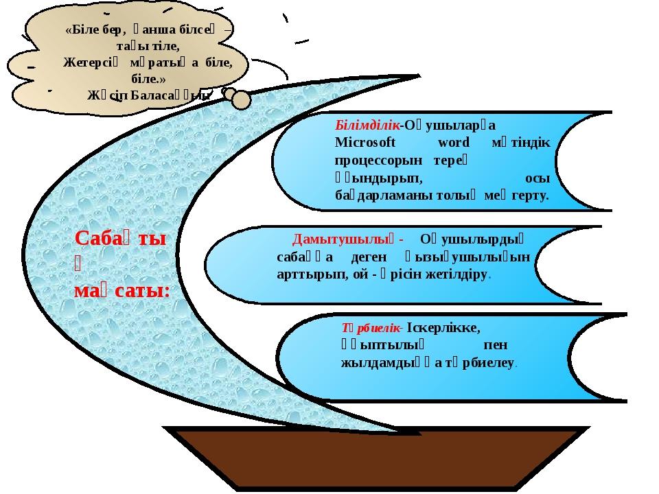 MS Word терезесінің элеметтері Жұмыс аймағы Айналдыру жолағы Стандартты панел...