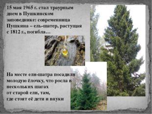 15 мая 1965 г. стал траурным днем в Пушкинском заповеднике: современница Пушк