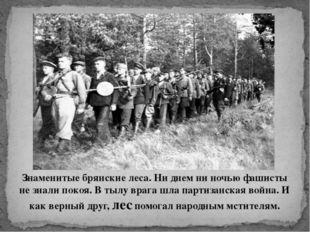Знаменитые брянские леса. Ни днем ни ночью фашисты не знали покоя. В тылу вра