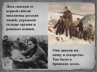 Леса спасали от верной гибели миллионы русских людей, укрывали склады оружия