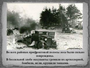 Во всех районах прифронтовой полосы леса были сильно повреждены. В бессильной