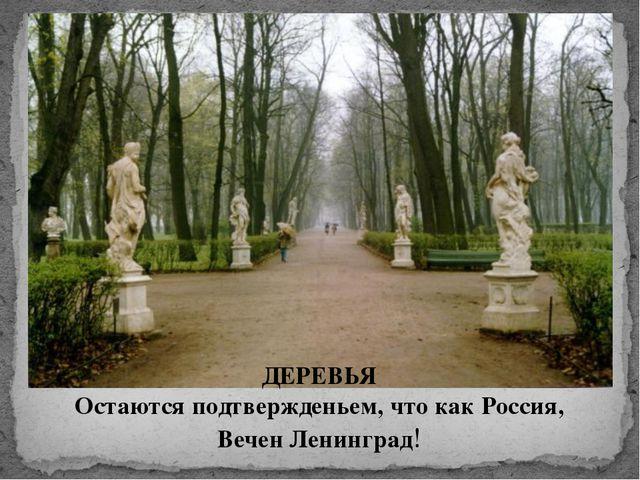 ДЕРЕВЬЯ Остаются подтвержденьем, что как Россия, Вечен Ленинград!