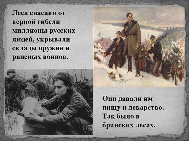 Леса спасали от верной гибели миллионы русских людей, укрывали склады оружия...