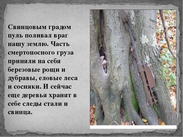 Свинцовым градом пуль поливал враг нашу землю. Часть смертоносного груза прин...