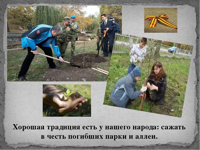 Хорошая традиция есть у нашего народа: сажать в честь погибших парки и аллеи.