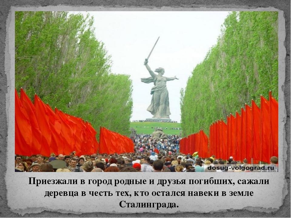 Приезжали в город родные и друзья погибших, сажали деревца в честь тех, кто о...