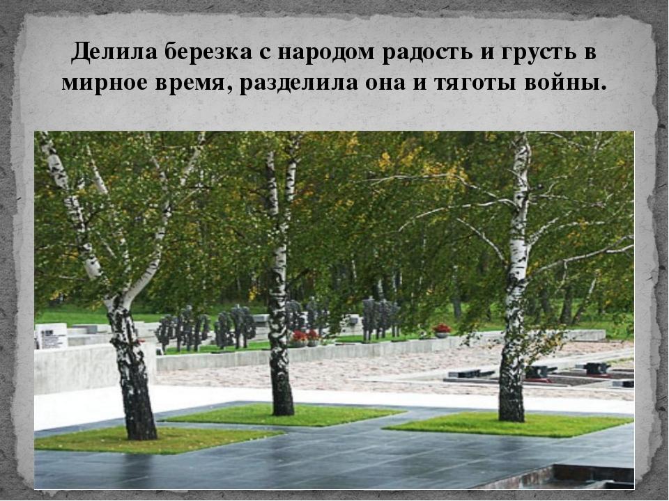 Делила березка с народом радость и грусть в мирное время, разделила она и тяг...