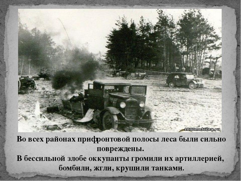 Во всех районах прифронтовой полосы леса были сильно повреждены. В бессильной...