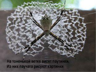 На тоненькой ветке висят паутинки. Из них паучата рисуют картинки.