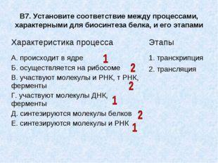 В7. Установите соответствие между процессами, характерными для биосинтеза бел
