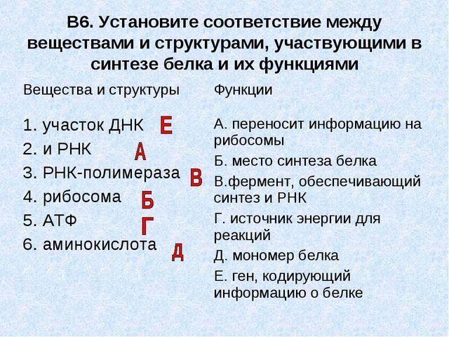 В6. Установите соответствие между веществами и структурами, участвующими в си...