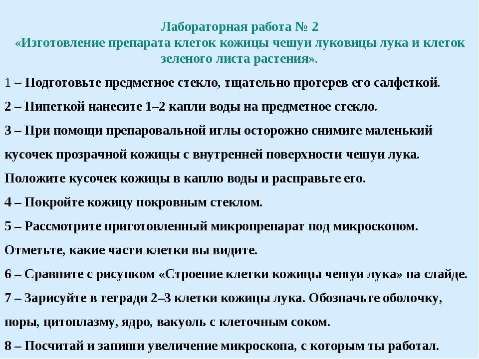Лабораторная работа № 2 «Изготовление препарата клеток кожицы чешуи луковицы...