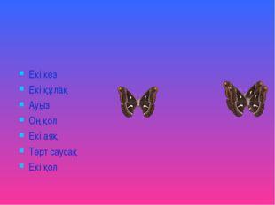 Екі көз Екі құлақ Ауыз Оң қол Екі аяқ Төрт саусақ Екі қол