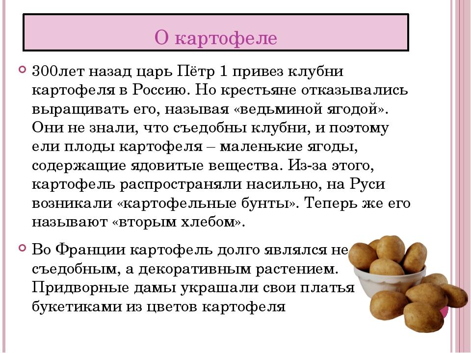 О картофеле 300лет назад царь Пётр 1 привез клубни картофеля в Россию. Но кре...