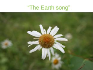 """The Earth song"""