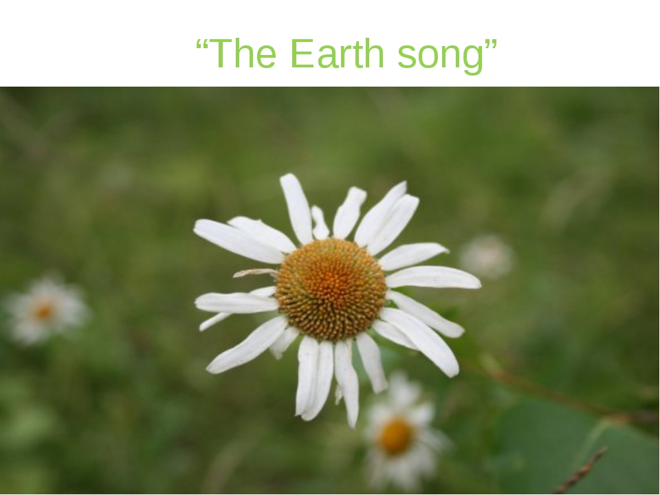 """""""The Earth song"""""""