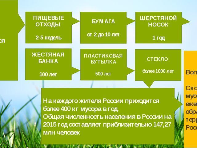 Сколько времени разлагается бытовой мусор? На каждого жителя России приходит...