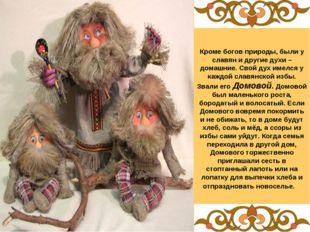 Кроме богов природы, были у славян и другие духи – домашние. Свой дух имелся