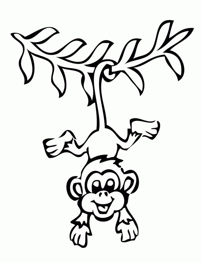 Monkey Coloring Pages: