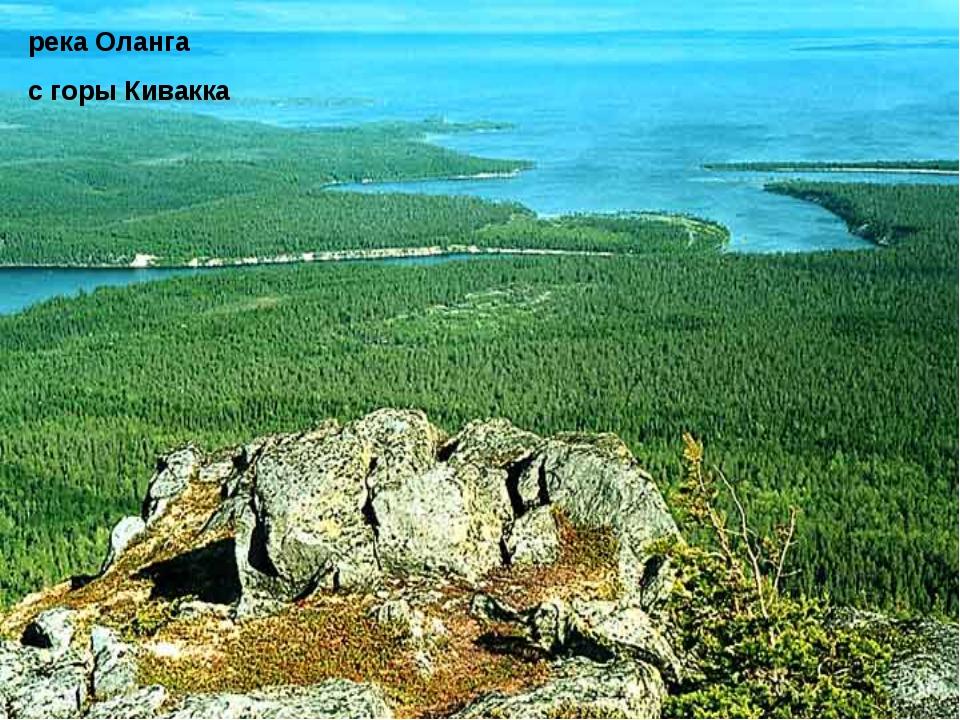 река Оланга с горы Кивакка