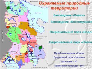 Заповедник «Кивач» Заповедник «Костомукшский» Национальный парк «Водлозерский