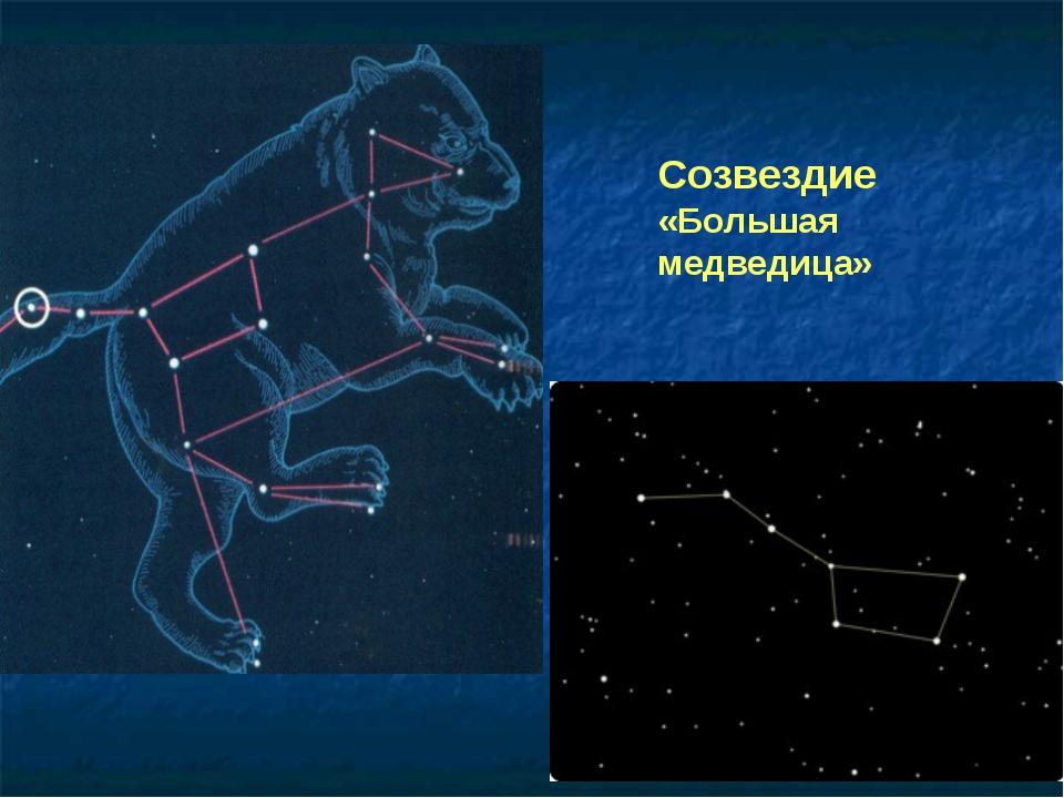 Созвездие «Большая медведица»