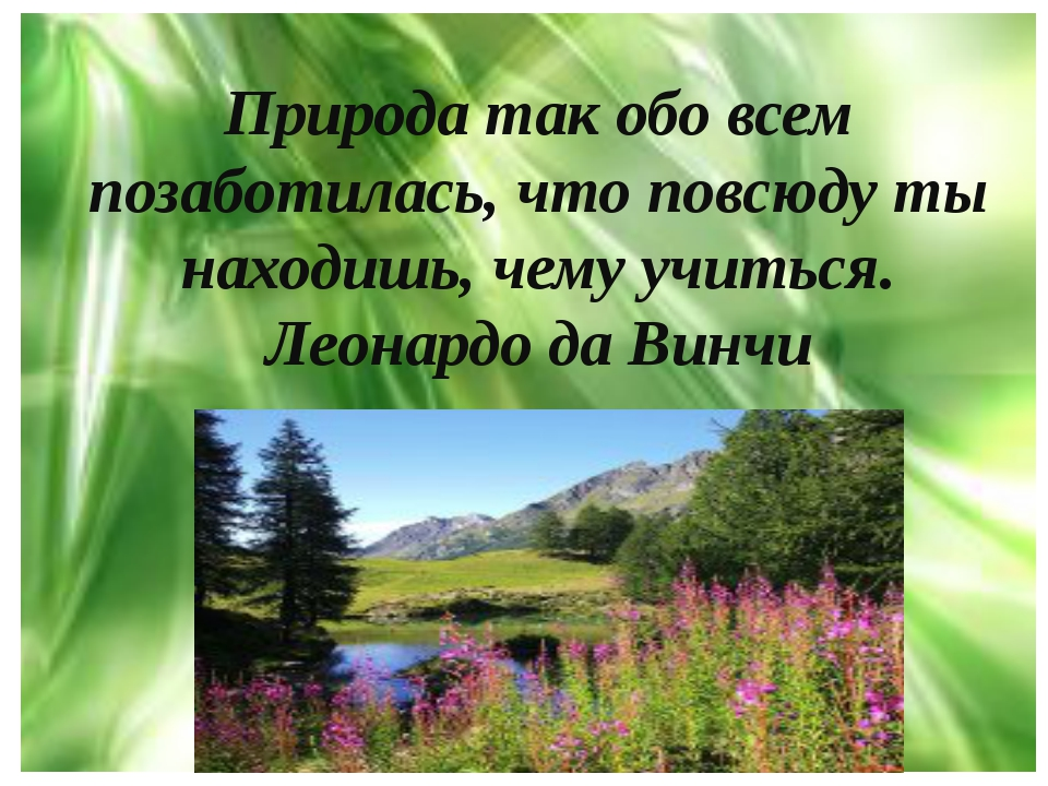 Природа так обо всем позаботилась, что повсюду ты находишь, чему учиться. Лео...
