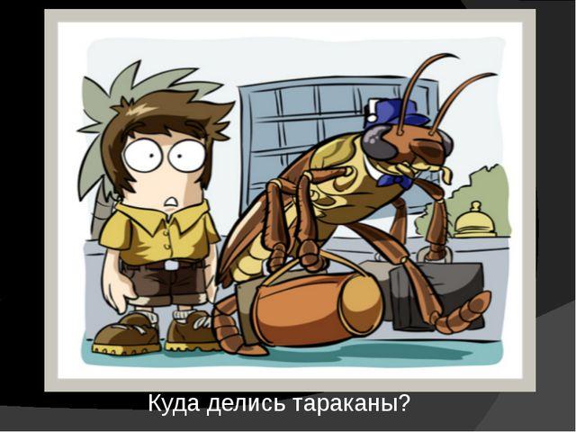 Куда делись тараканы?