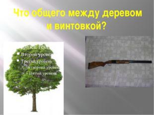 Что общего между деревом и винтовкой?