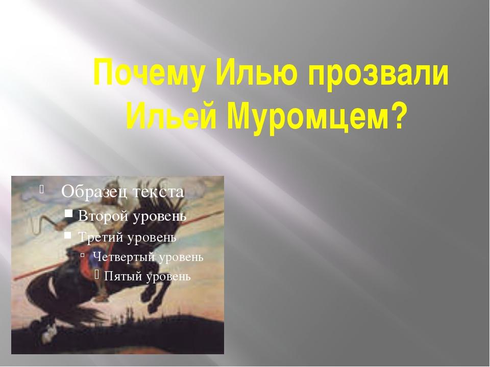 Почему Илью прозвали Ильей Муромцем?