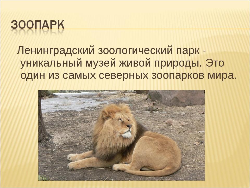 Ленинградский зоологический парк - уникальный музей живой природы. Это один...