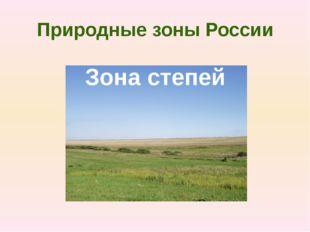 6. Основным занятием населения степей является… 1) земледелие 2) рыболовство