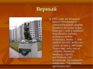 Верный В 1995 году на Южном шоссе Тольятти в автомобильной аварии погибла мол