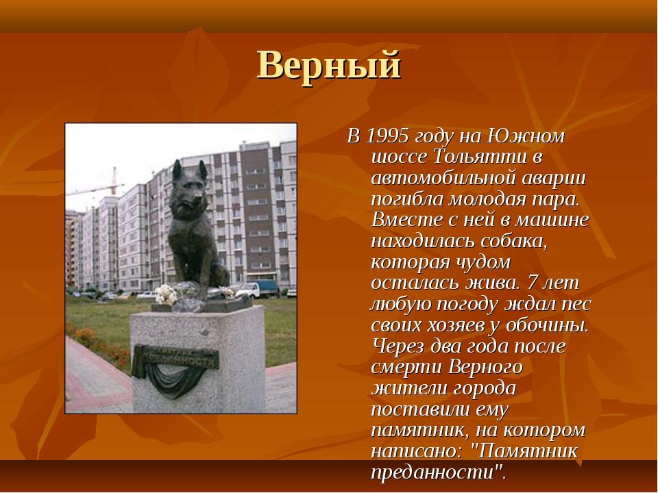 Верный В 1995 году на Южном шоссе Тольятти в автомобильной аварии погибла мол...