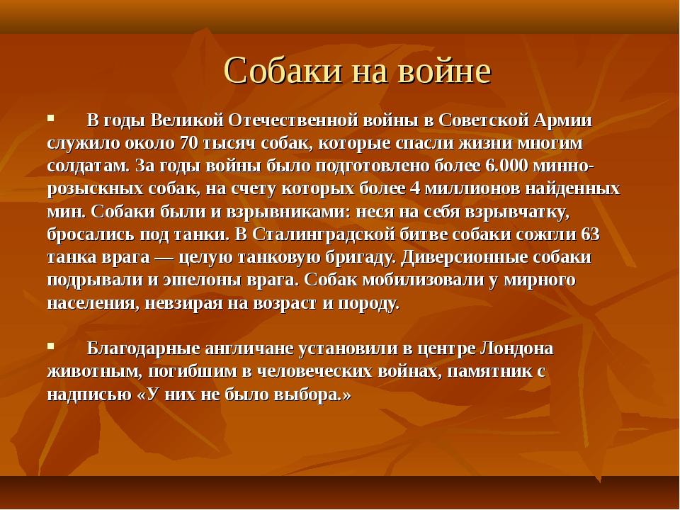 Собаки на войне В годы Великой Отечественной войны в Советской Армии служило...