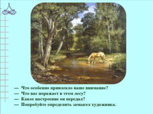 — Что особенно привлекло ваше внимание? — Что вас поражает в этом лесу? — Как