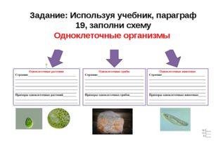 Задание: Используя учебник, параграф 19, заполни схему Одноклеточные организмы