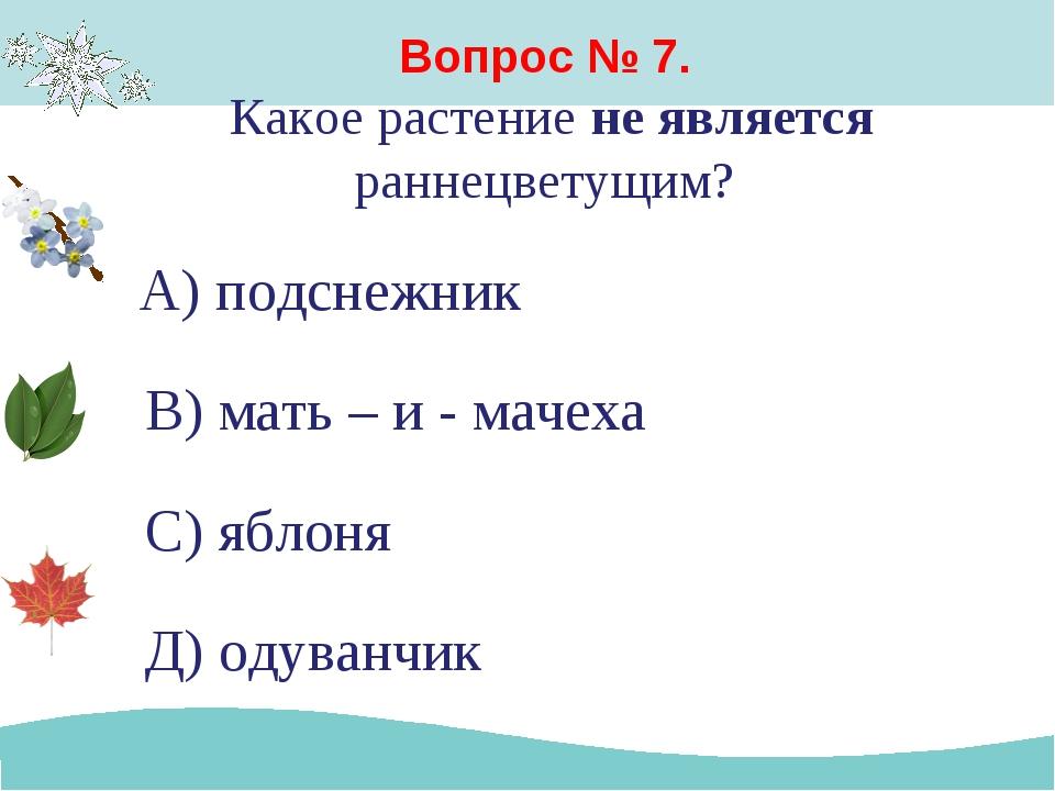 Вопрос № 7. Какое растение не является раннецветущим? А) подснежник В) мать –...