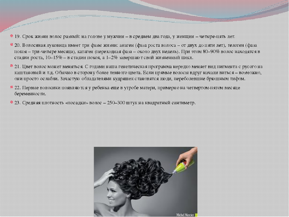 19. Срок жизни волос разный: на голове у мужчин – в среднем два года, у женщи...