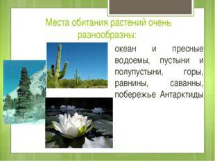 Места обитания растений очень разнообразны: океан и пресные водоемы, пустыни
