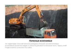 Полезные ископаемые На территории Тульской области разведаны большие залежи