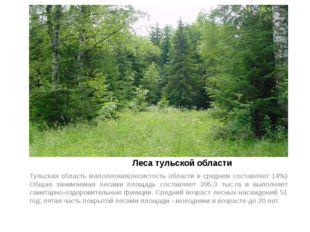 Леса тульской области Тульская область малолесная(лесистость области в средн