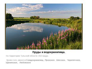 Пруды и водохранилища. На территории Тульской области 652 пруда. Кроме того,