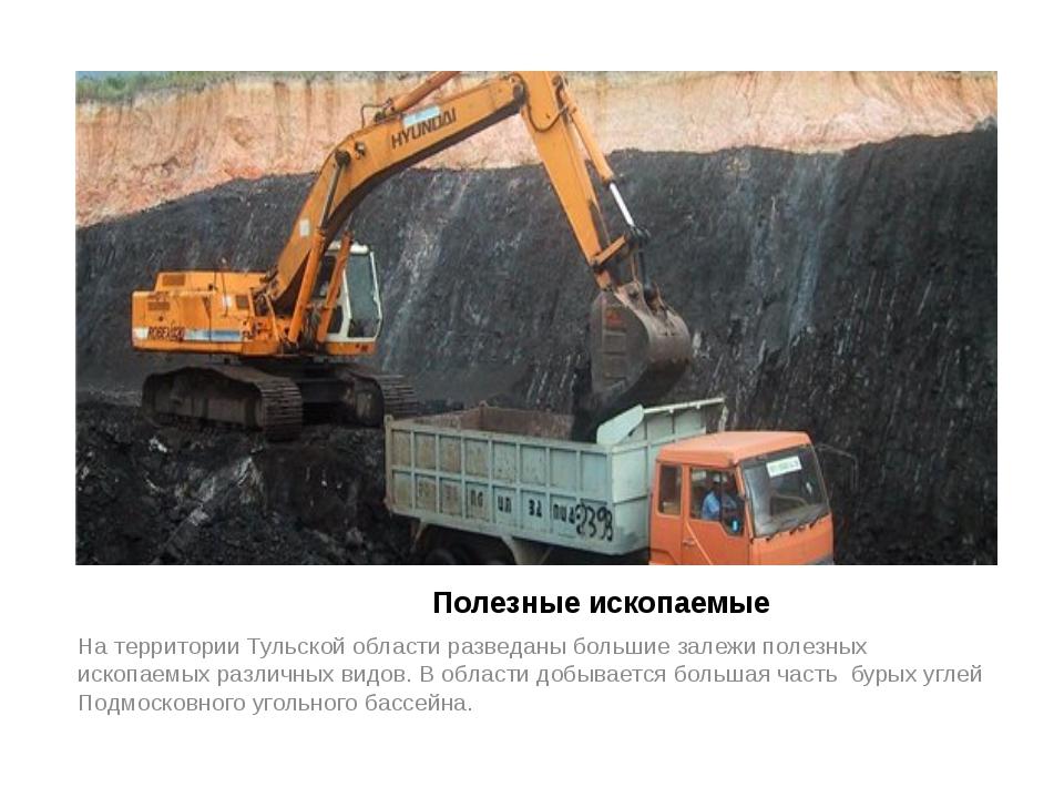 Полезные ископаемые На территории Тульской области разведаны большие залежи...