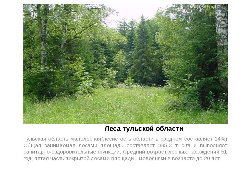 Леса тульской области Тульская область малолесная(лесистость области в средн...